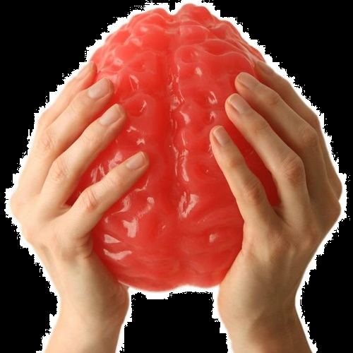 Halloween Candy Gifts Gummy Life-Sized Brain Candy
